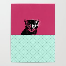 Cat in pink Poster