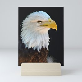 American Bald Eagle Mini Art Print