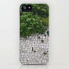 Man vs. Nature iPhone Case