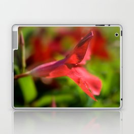 Mandeville no. 20 (The Oasis) Laptop & iPad Skin