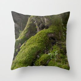 Ancient tree root with moss Throw Pillow