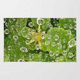 Spider Silk. Rug