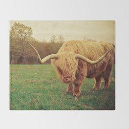Scottish Highland Steer - regular version Throw Blanket
