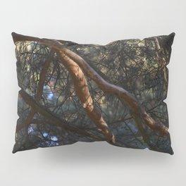 Rapunzel Pillow Sham