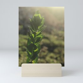 Growing 1 Mini Art Print
