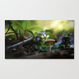 Mushroom With Purple and White Flowers Canvas Print