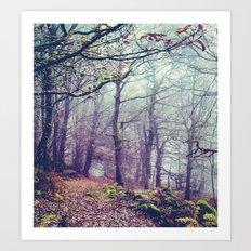 Peak District Forest Art Print