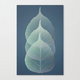 The Silver Breath of Winter Canvas Print