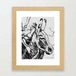 Oatman Burro II Framed Art Print