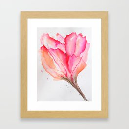 Bold Pink and Peach Spring Tulip Framed Art Print