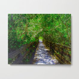 Path under the Tree Canopy Metal Print