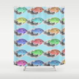 Swimming Fishies Shower Curtain