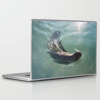seal Laptop & iPad Skins featuring Seal  by Chelle Wootten