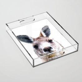 Kangaroo Portrait Acrylic Tray