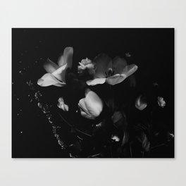 Night Garden 2 Canvas Print