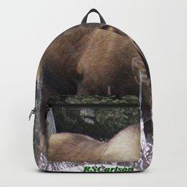 Roadside Browse Backpack