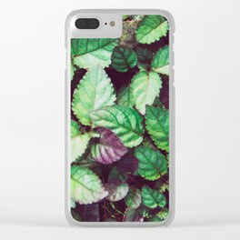 green floor Clear iPhone Case