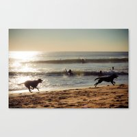dogs Canvas Prints featuring Dogs by Sébastien BOUVIER