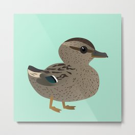 Cute female mallard Metal Print