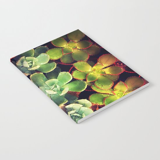 Terrarium Notebook