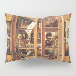 Cabinet of Curiosities Pillow Sham