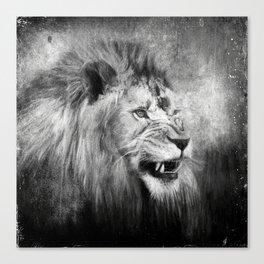 Grunge Snarling Lion Canvas Print