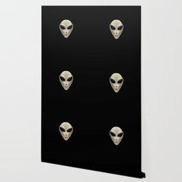 Grey Alien Wallpaper