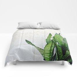 snake plant Comforters
