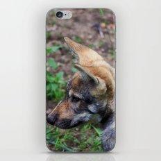 Canis Lupus Lupus II iPhone Skin