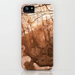 Acrylic Grunge Forest - Sepia Haze iPhone Case
