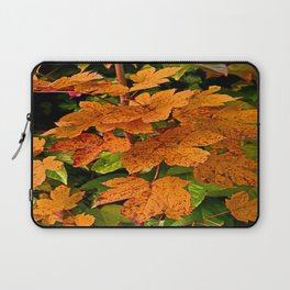 glowing autumn leafs Laptop Sleeve