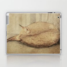A Quiet Place (sepia option) Laptop & iPad Skin