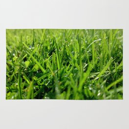 The grass is green. Rug