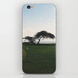 Acacia Field,Ethiopia iPhone Skin
