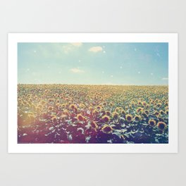 Dreamy Sunflowers Art Print
