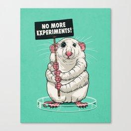 No more experiments! Canvas Print