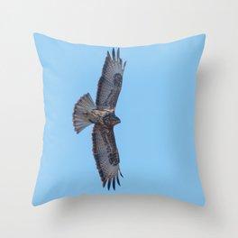 Common Buzzard (Buteo buteo) in flight  blue sky Throw Pillow