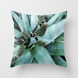 16     Plants Photography   200630   Throw Pillow