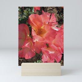 Peachy Rose Mini Art Print