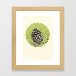 A pinecone Framed Art Print