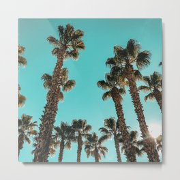 16 Palm Trees Art Print {1 of 2} Metal Print