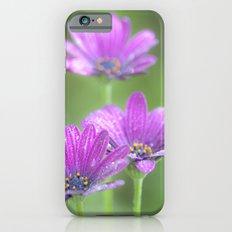 Comos Flowers iPhone 6s Slim Case