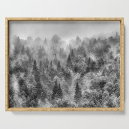 Pinsapos into the woods. BW. Foggy sunrise Serving Tray