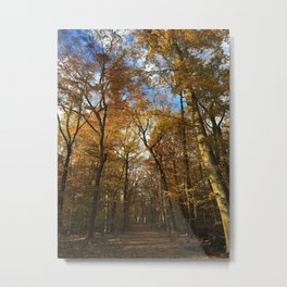 Mysterious Forest Metal Print