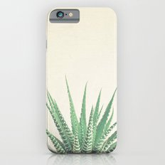 Haworthia iPhone 6 Slim Case