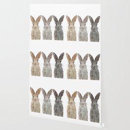 Triple Bunnies Wallpaper