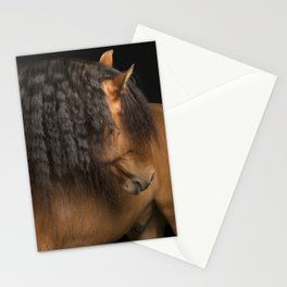 Horse Fine Art Stationery Cards