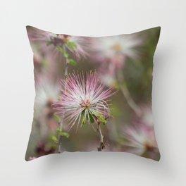 Desert fairy dusters Throw Pillow