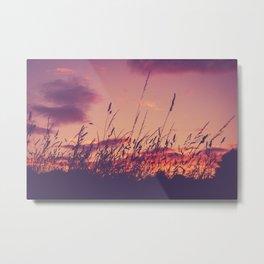 Llandaff Meadow Sunset Metal Print