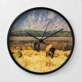 Wild Buffalo Wall Clock